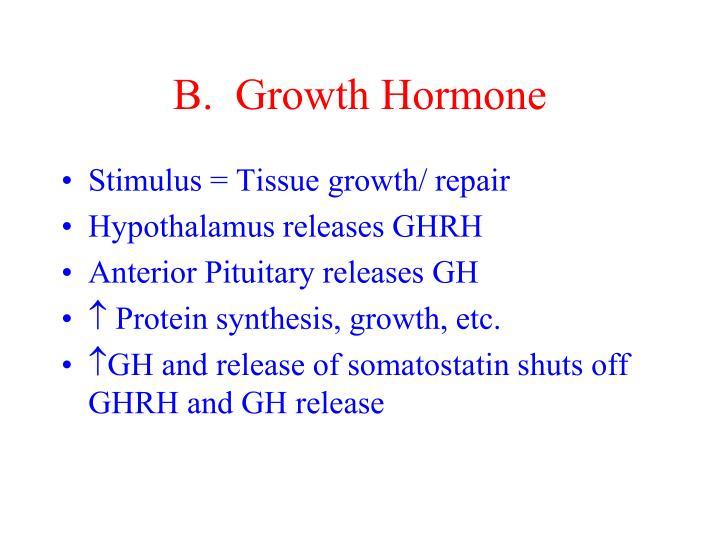 B.  Growth Hormone
