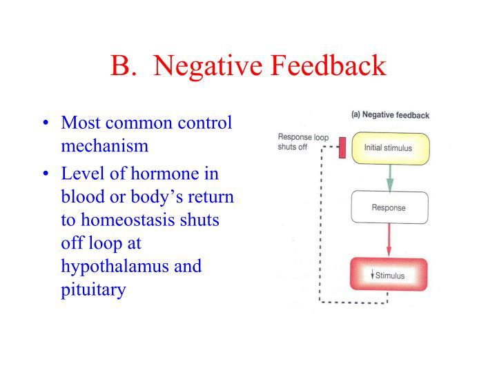B.  Negative Feedback
