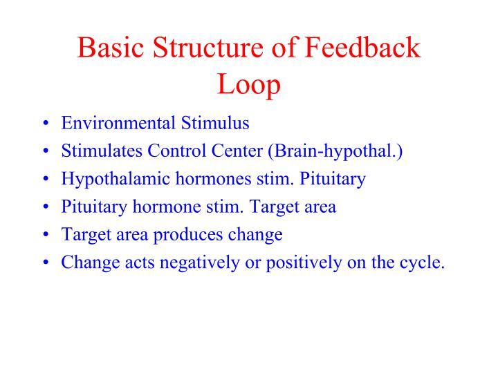Basic Structure of Feedback Loop