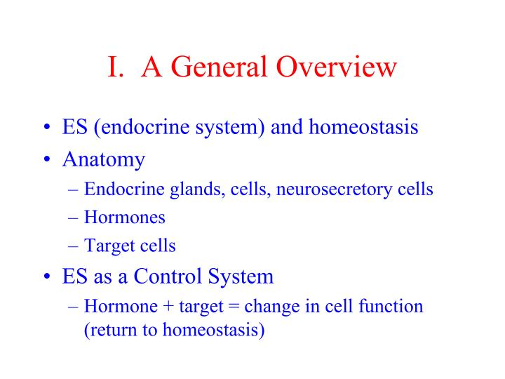 I.  A General Overview