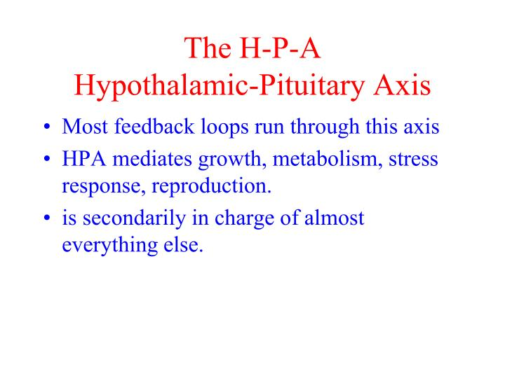 The H-P-A