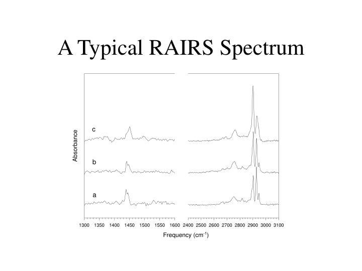 A Typical RAIRS Spectrum