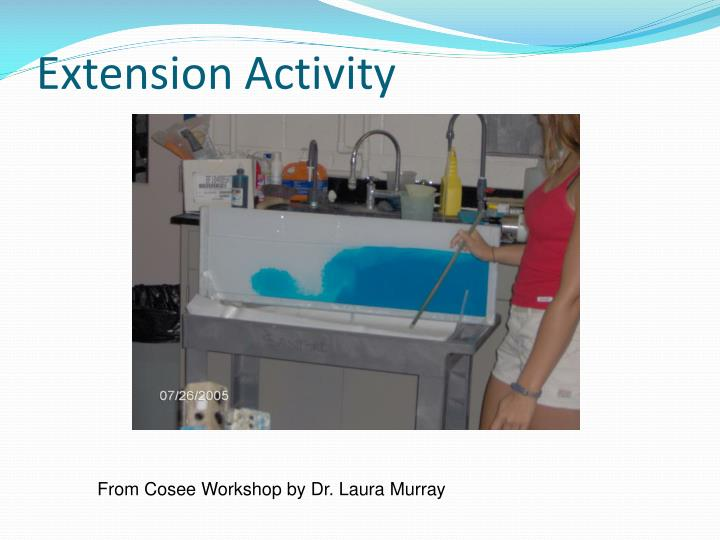 Extension Activity