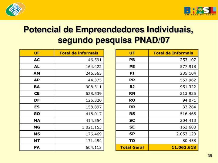Potencial de Empreendedores Individuais, segundo pesquisa PNAD/07