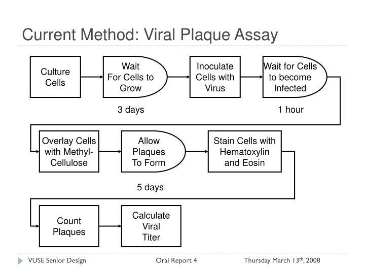 Current Method: Viral Plaque Assay