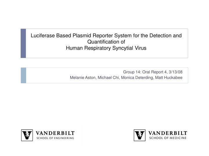 Luciferase Based Plasmid Reporter System for the Detection and Quantification of
