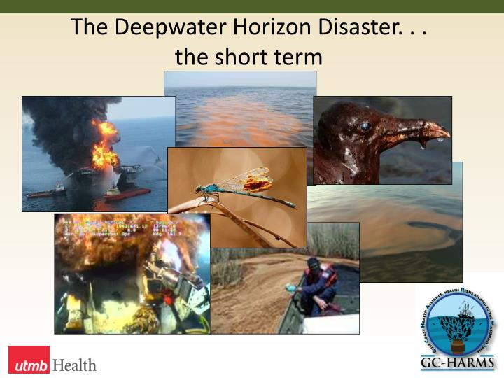 The Deepwater Horizon Disaster. . .