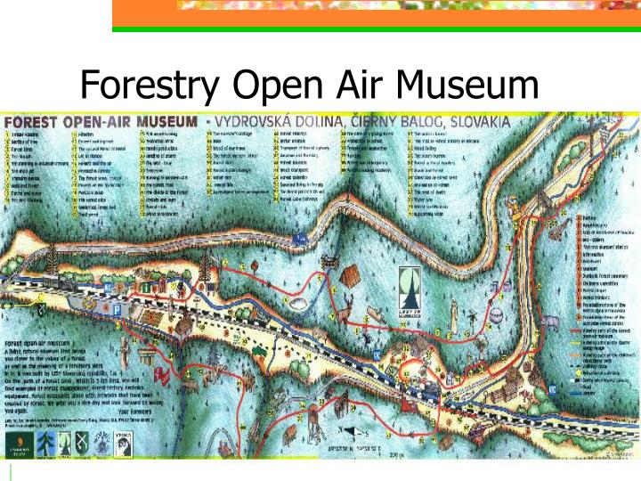 Forestry Open Air Museum