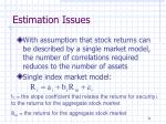 estimation issues1