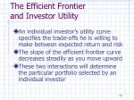 the efficient frontier and investor utility
