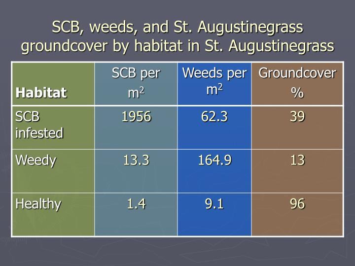SCB, weeds, and St. Augustinegrass groundcover by habitat in St. Augustinegrass