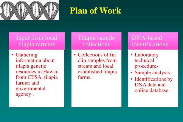 Plan of Work