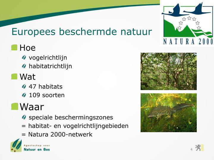 Europees beschermde natuur