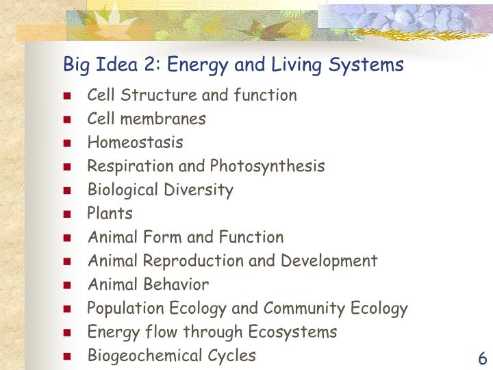 Big Idea 2: Energy and Living Systems