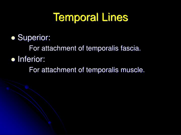 Temporal lines