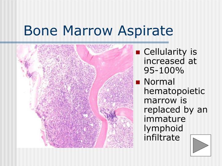 Bone Marrow Aspirate