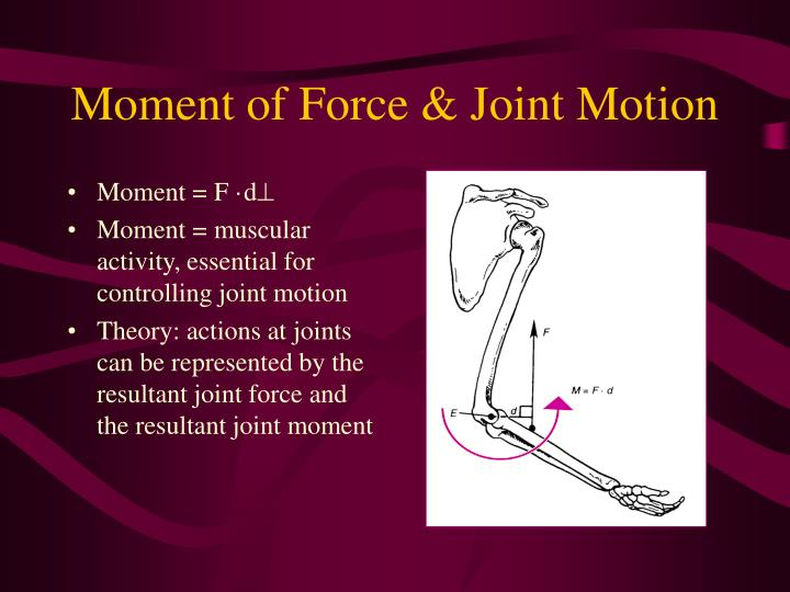 Moment of Force & Joint Motion