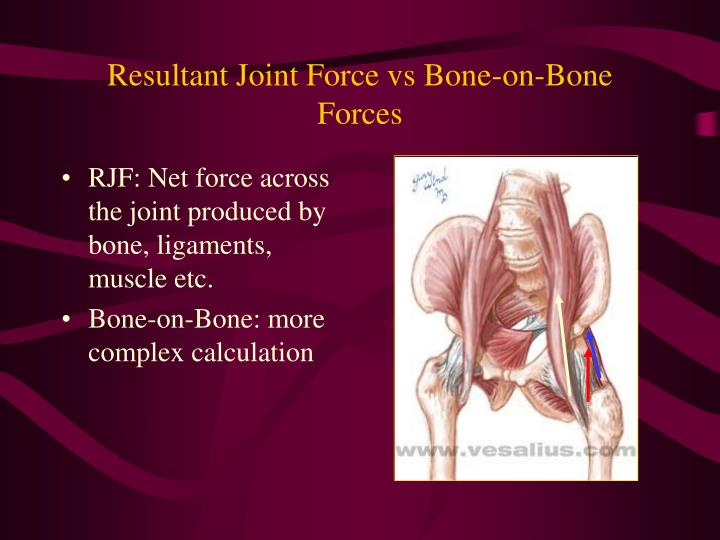 Resultant Joint Force vs Bone-on-Bone Forces