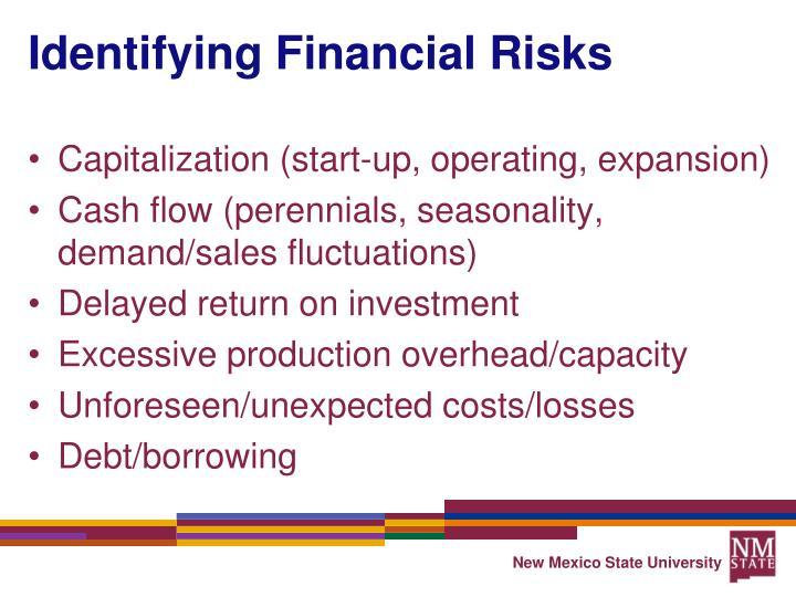 Identifying Financial Risks