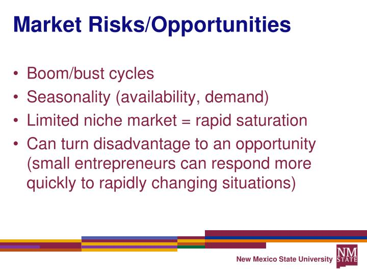 Market Risks/Opportunities