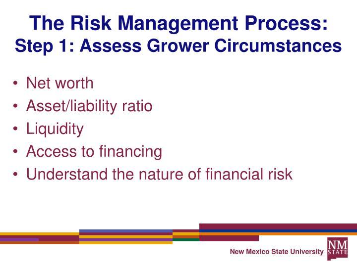 The Risk Management Process: