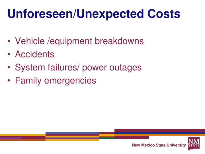 Unforeseen/Unexpected Costs