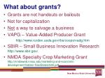 what about grants