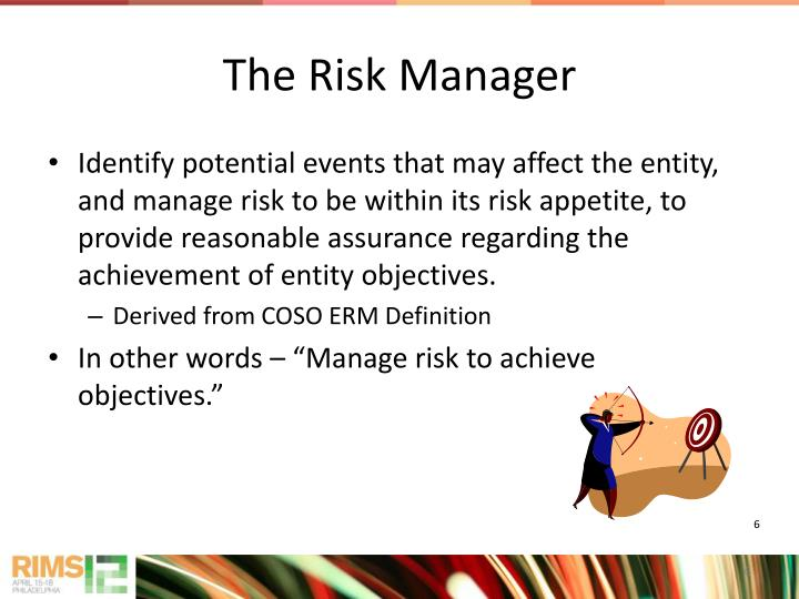 The Risk Manager