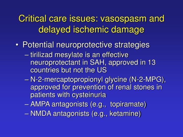 Critical care issues: vasospasm and delayed ischemic damage
