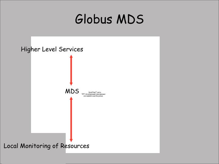 Globus MDS