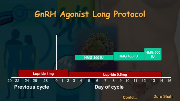 GnRH Agonist Long Protocol