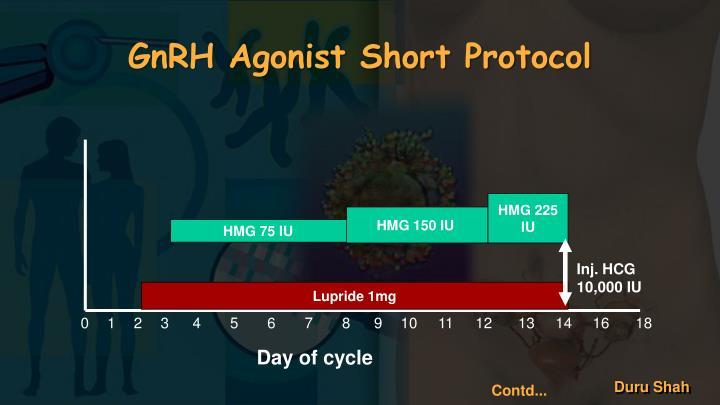GnRH Agonist Short Protocol