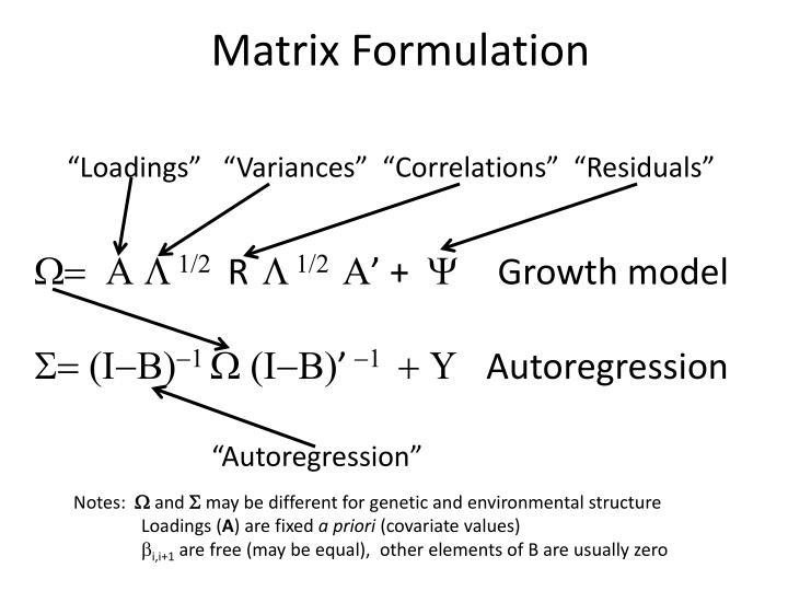 Matrix Formulation