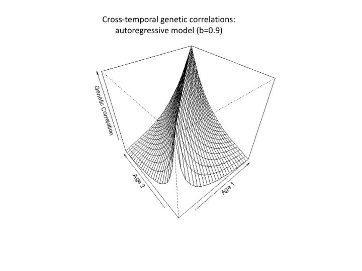 Cross-temporal genetic correlations: autoregressive model (b=0.9)