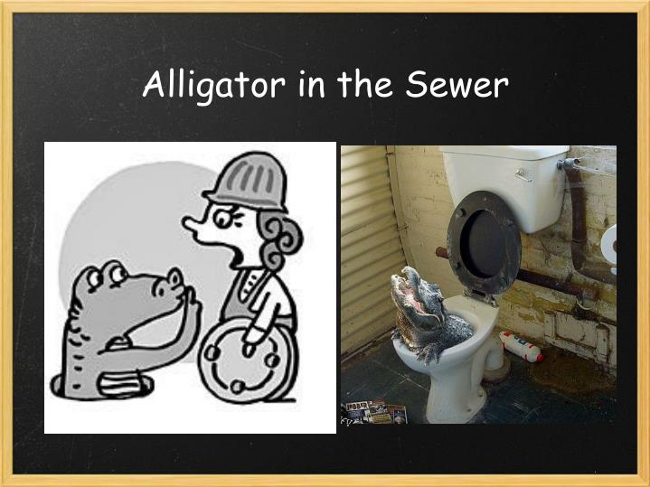 Alligator in the Sewer