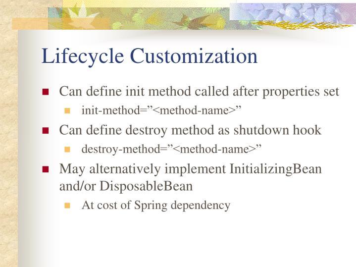 Lifecycle Customization
