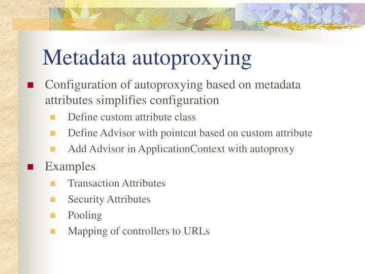 Metadata autoproxying