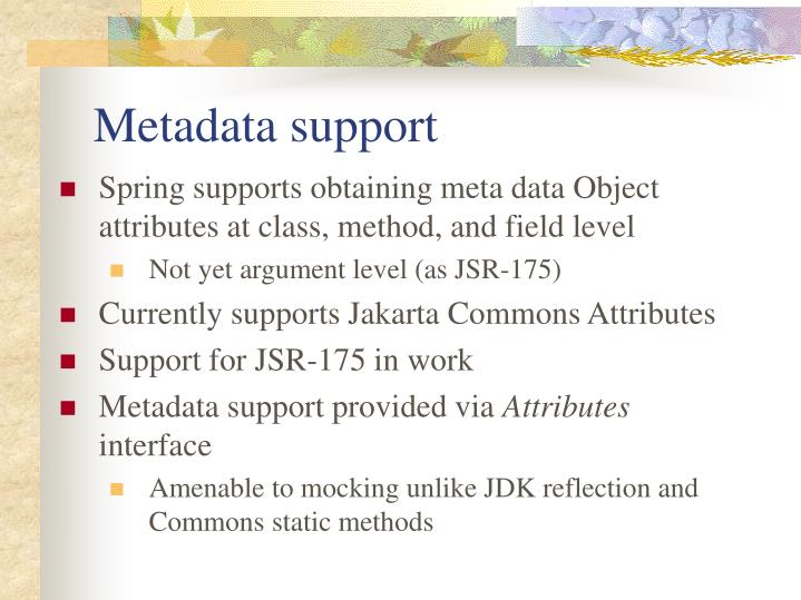 Metadata support