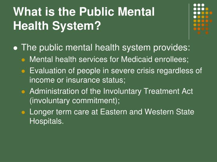 What is the Public Mental Health System?