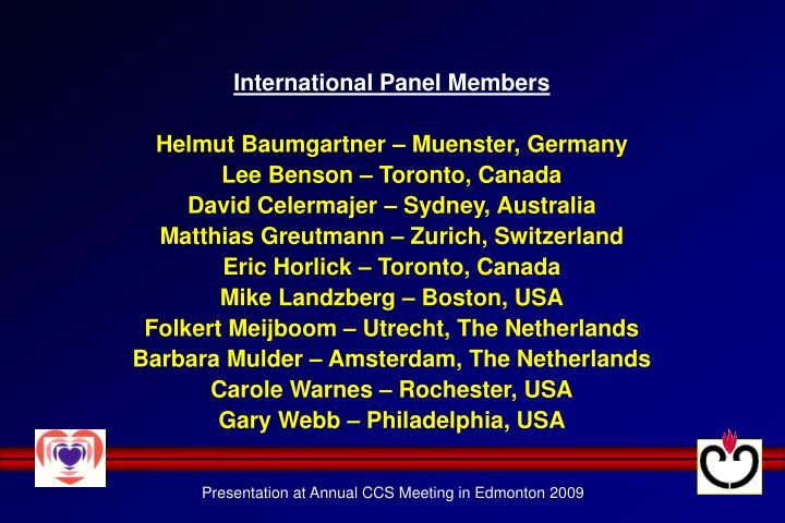 International Panel Members