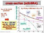cross section msugra