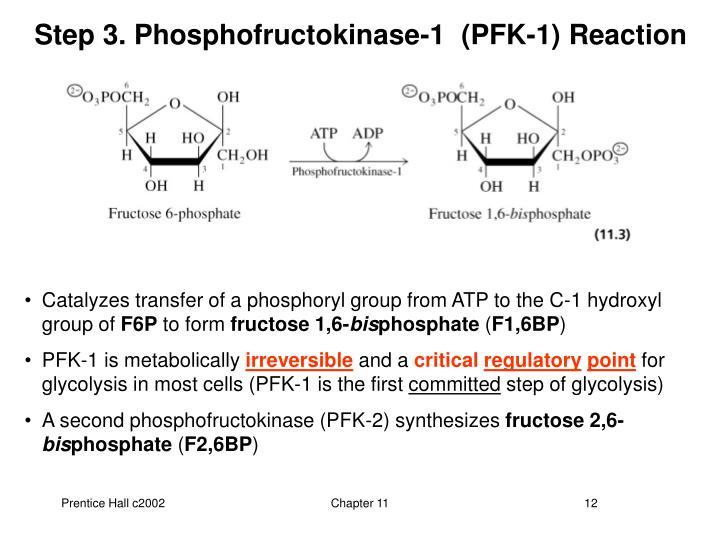 Step 3. Phosphofructokinase-1  (PFK-1)