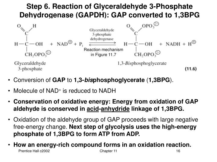 Step 6. Reaction of