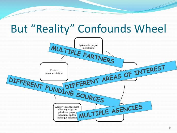 """But """"Reality"""" Confounds Wheel"""