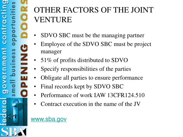 OTHER FACTORS OF THE JOINT VENTURE