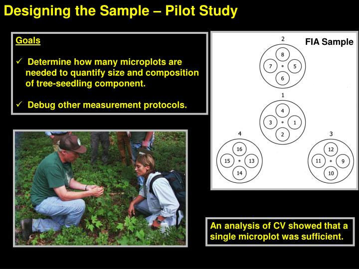 Designing the Sample – Pilot Study