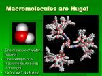 macromolecules are huge