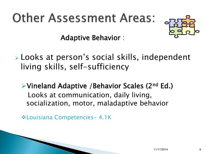 Other Assessment Areas: