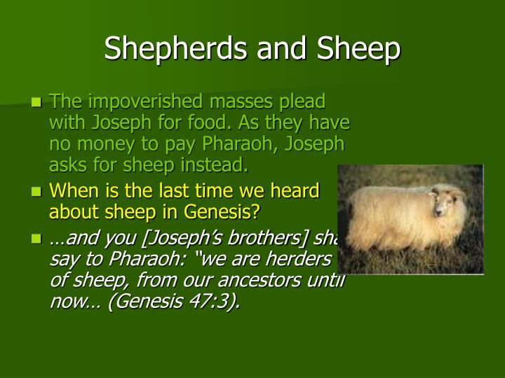 Shepherds and Sheep