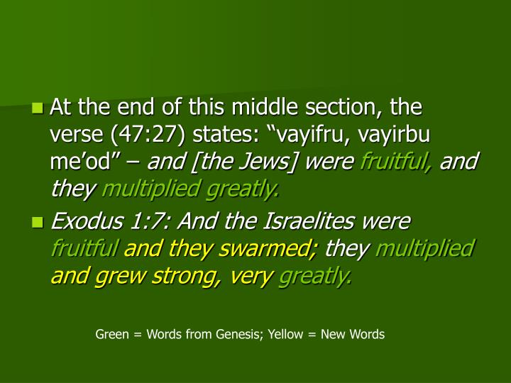 "At the end of this middle section, the verse (47:27) states: ""vayifru, vayirbu me'od"" –"